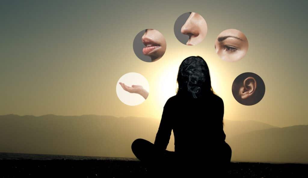 le rôle des 5 sens en yoga